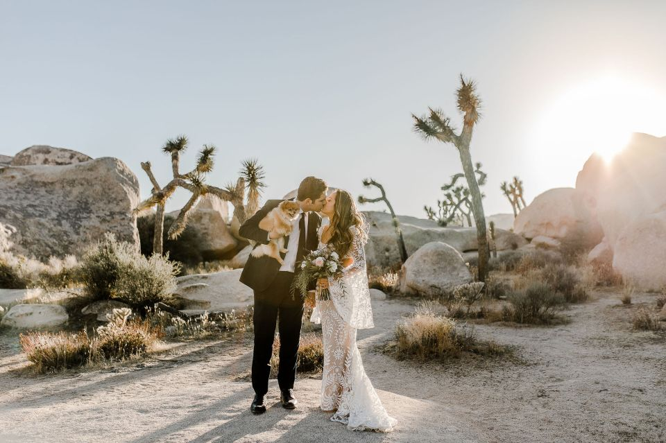 bride and groom in joshua tree during their elopement