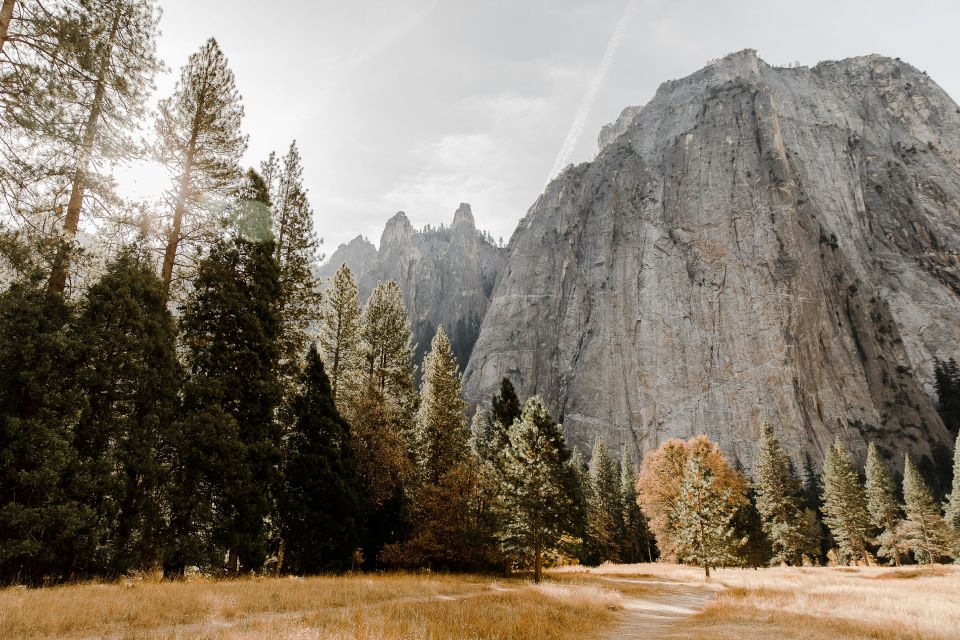 landscape photo of yosemite national park