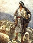 davidshepherd
