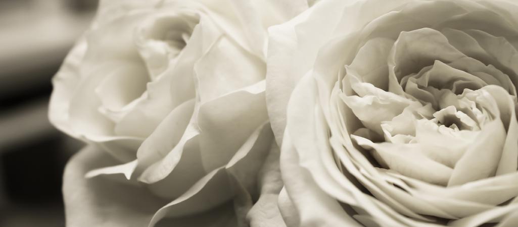Breen's Weddings & Events