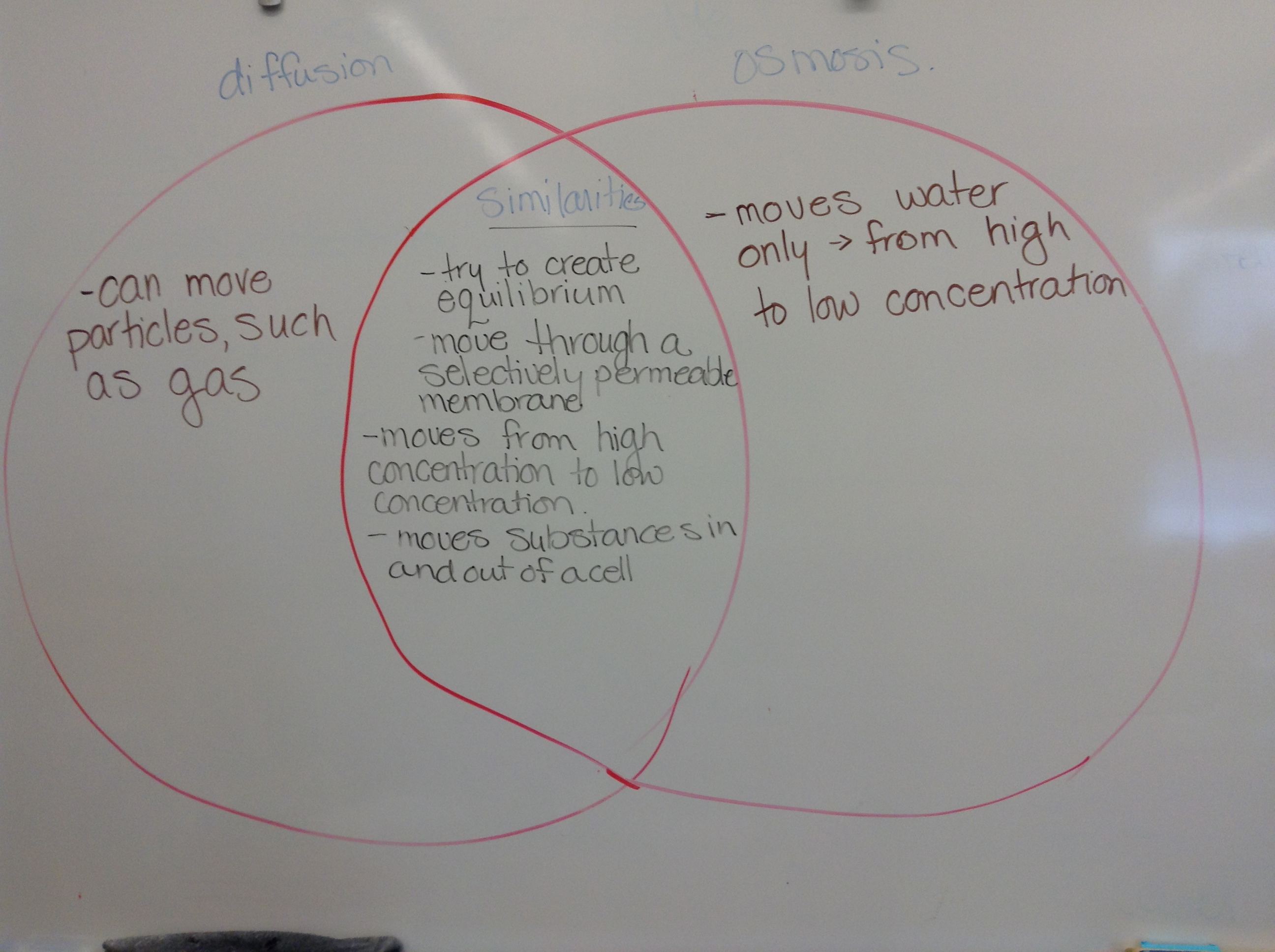 Osmosis And Diffusion Venn Diagram