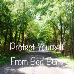 Protect Yourself from Bed Bugs