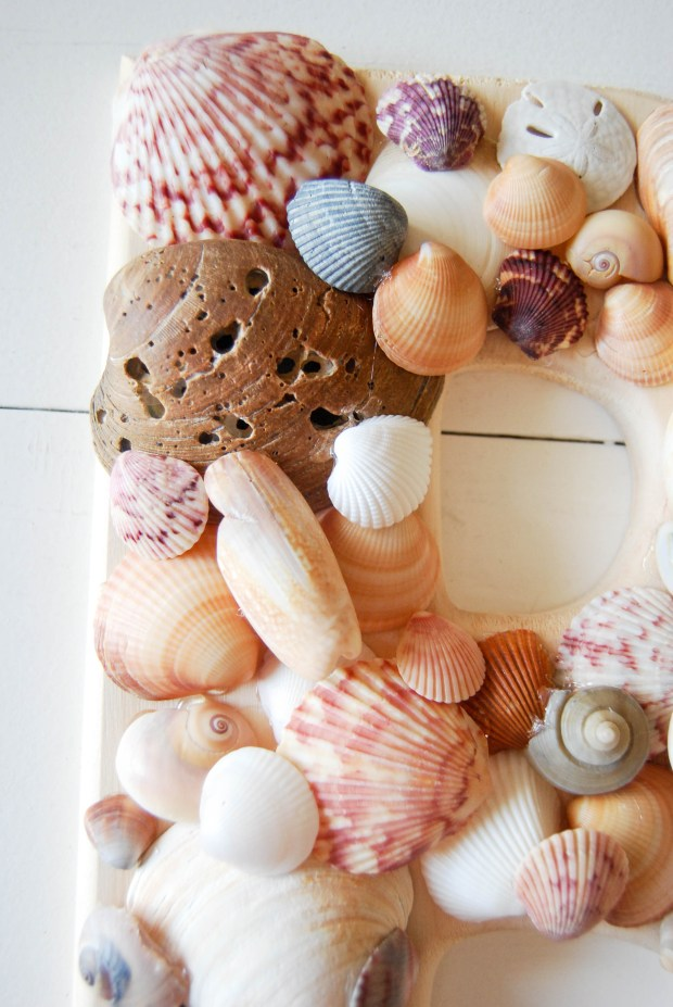 DIY Friday- SeaShell Letter | Breezing Through 10
