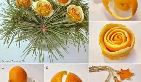 Roses parfumées en peau d'orange