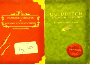 Fantastic Beasts & Where to Find Them DJ