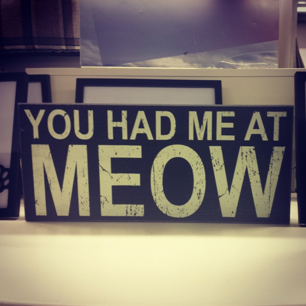 You had me at meow! TKmaxx (1/6)