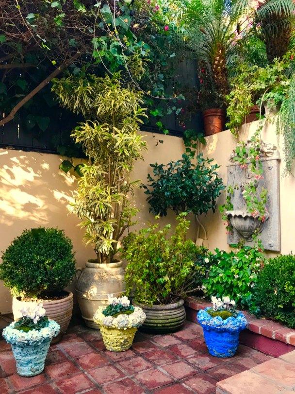 garden-curation-2