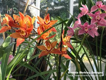 fresh summer flower and plant designs