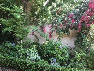 brenda-berkley-plantings-12
