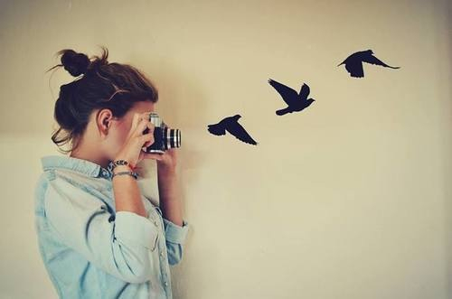 woman camera birds freedom
