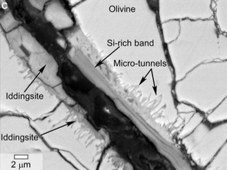 ALH84001: scanning electron microscope image showing tunnels and curved microtunnels. (NASA (2014))