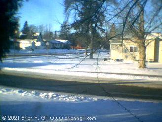 My corner of Sauk Centre, MN. (January 19, 2021)