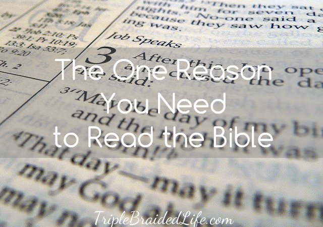 The One Reason You Need to Read the Bible