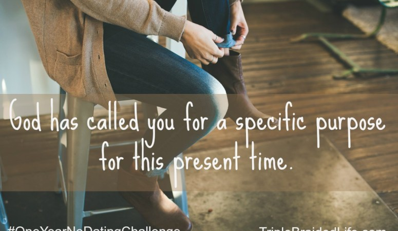 The One Year No Dating Challenge :: Your Calling :: Month 2