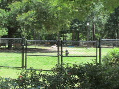 Overview of the dog park