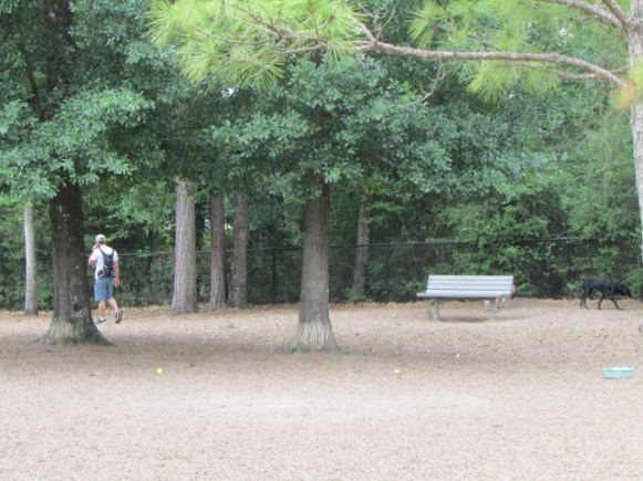 Large Dog park with trees and benches