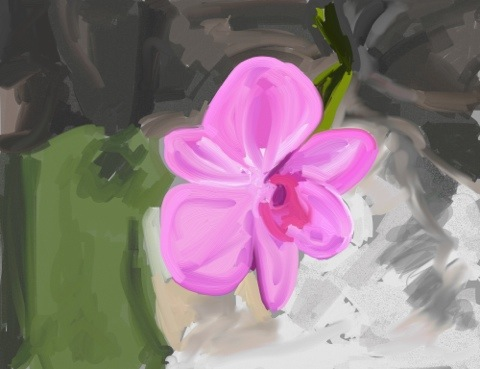 Orchid iPad painting