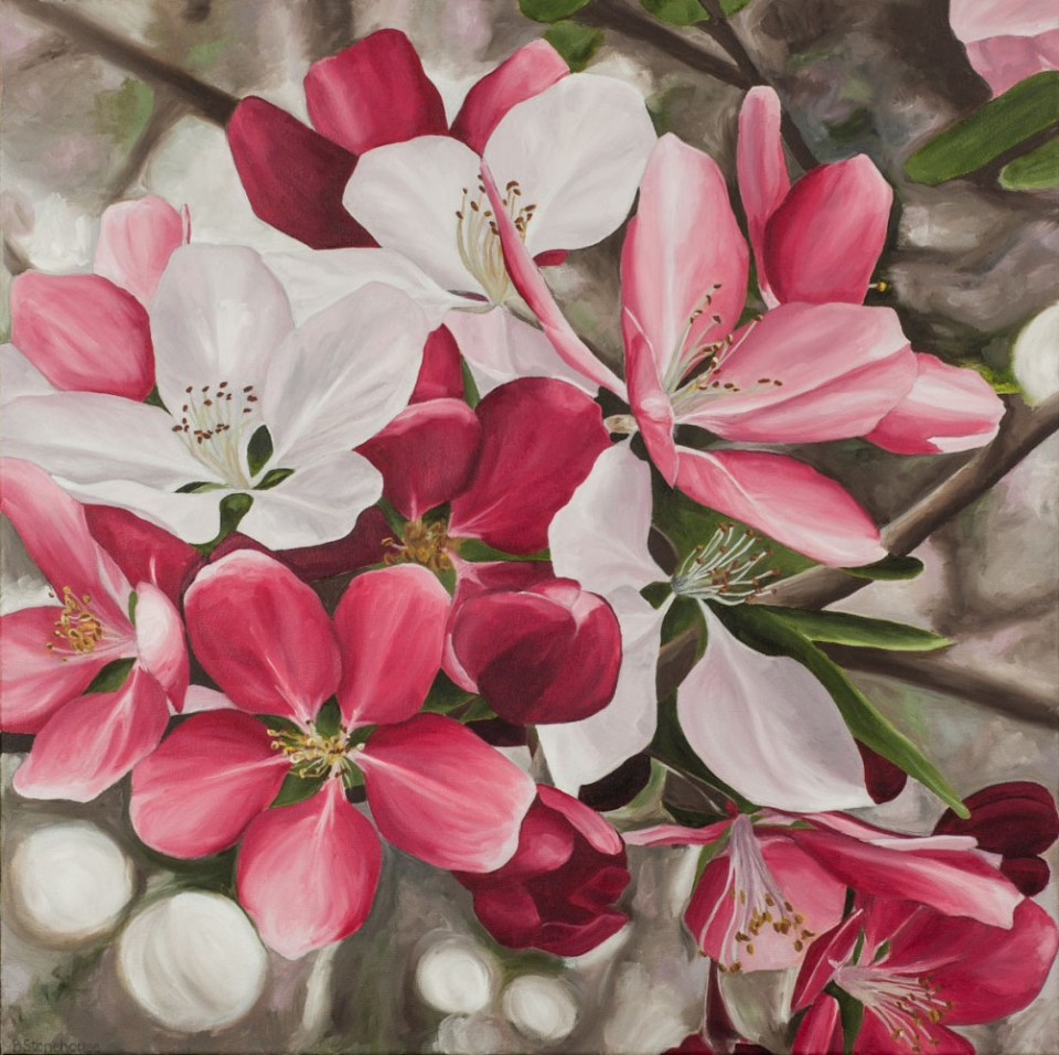 """Blossoms"" Brenda Stonehouse 24"" x 24"" oil on canvas. Limited edition prints available."