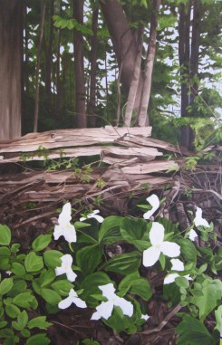 """""""Tranquility"""" Brenda Stonehouse 24"""" x 36"""" Limited edition prints on canvas available."""