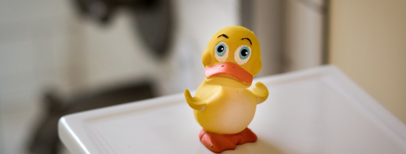 Rubber Ducky Photo 1