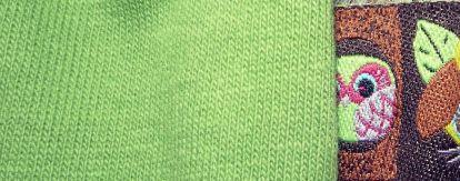 Eule spitzt aus der Seite des grünen Pullovers