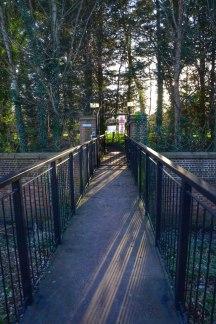 Brentford Dock Syon Park