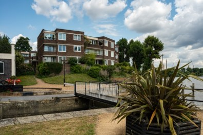 Brentford Dock an area rich in history nature and community Summer 2019 7