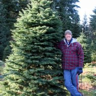Brent's favorite tree, two years in a row