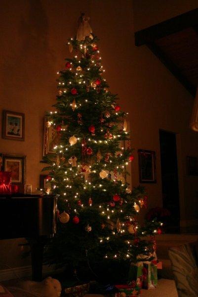 Grandma and Grandpa's Christmas Tree