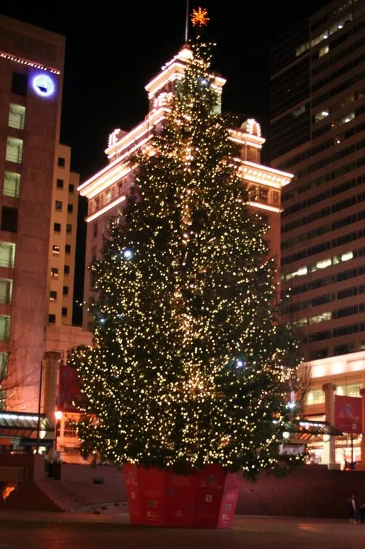 Pioneer Courthouse Square Christmas Tree