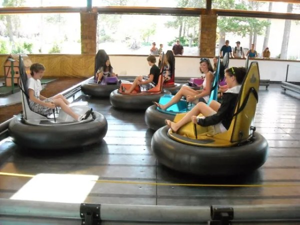 On the bumper cars