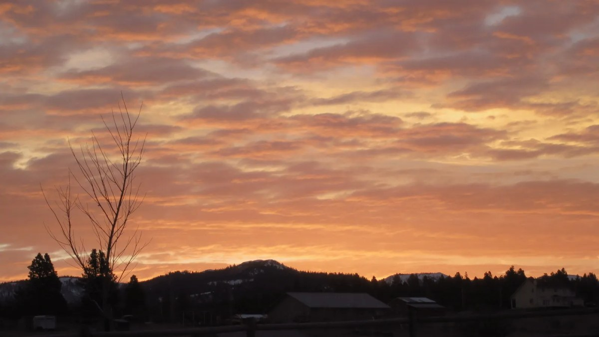 Dixie Sunrise