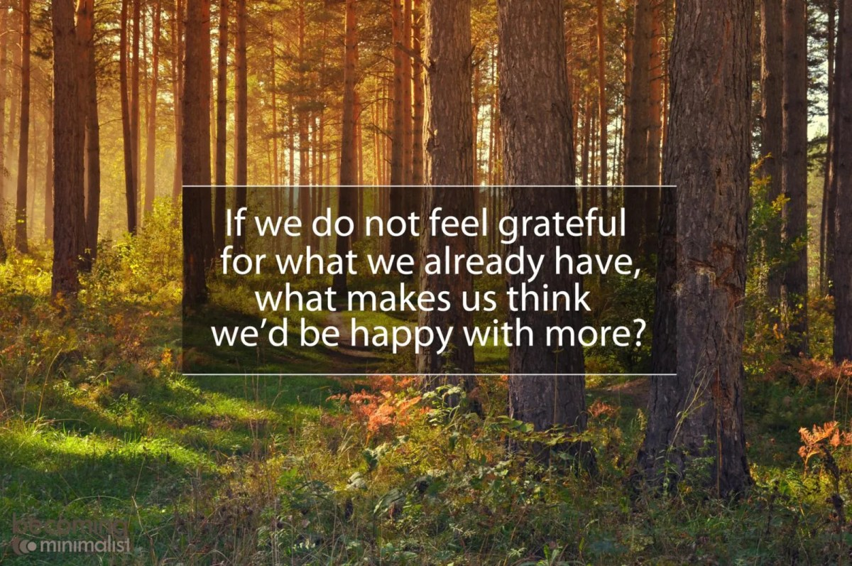 If we do not feel grateful for what we already have, what makes us think we'd be happy with more?