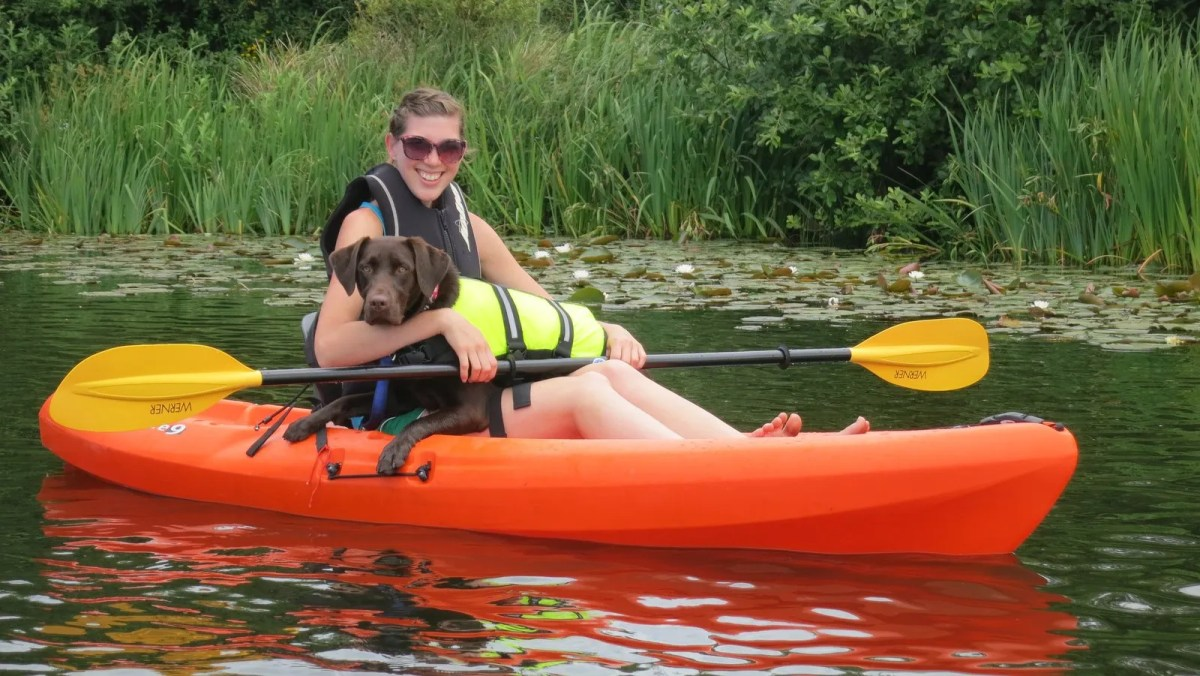 Kayaking With Mousse On Sunset Lake