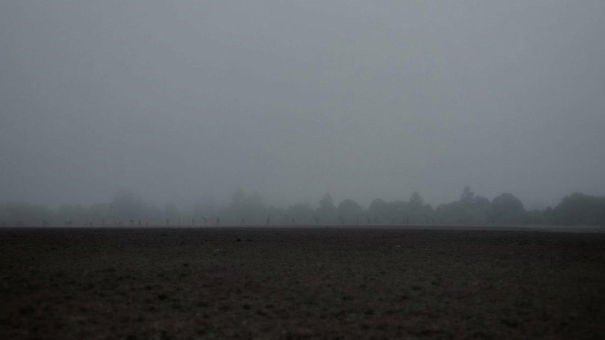 Fog-Pressed Earth