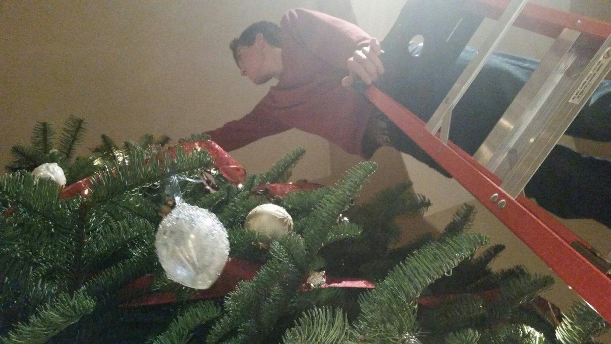 Getting the Christmas tree, 2014