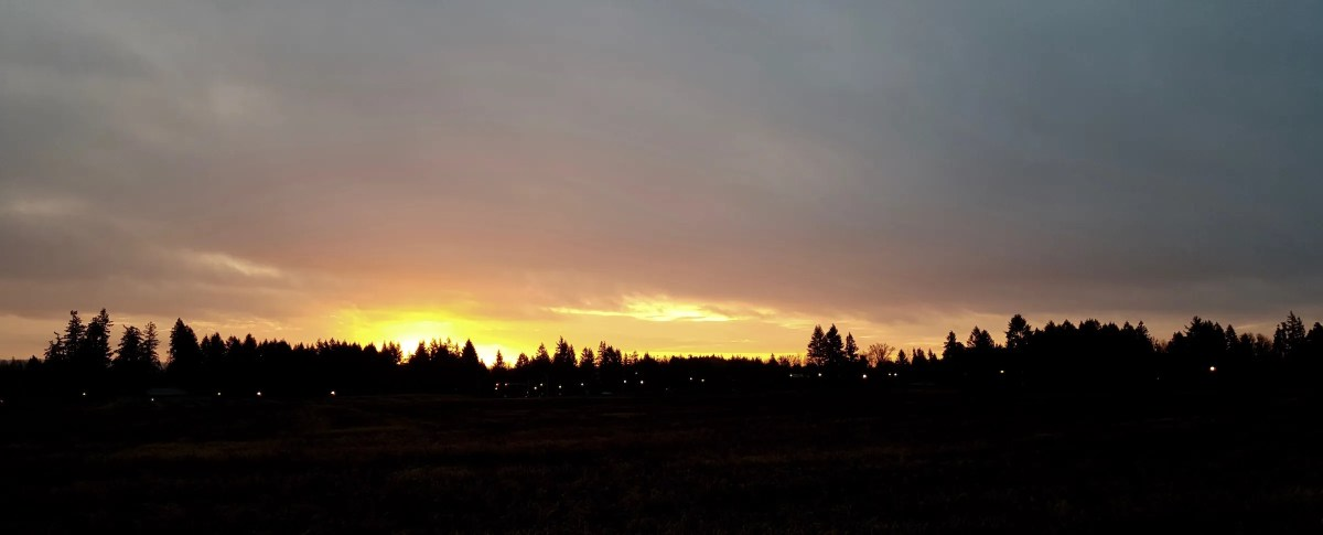 Morning Rise