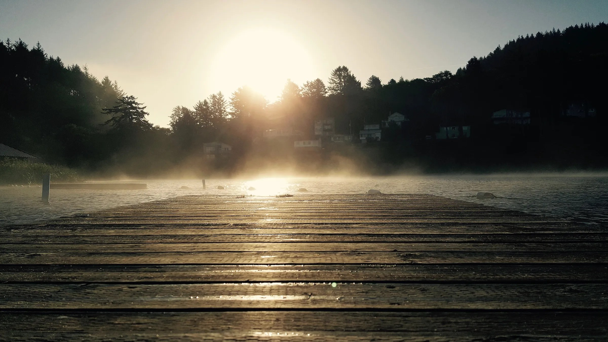 Mist over the dock