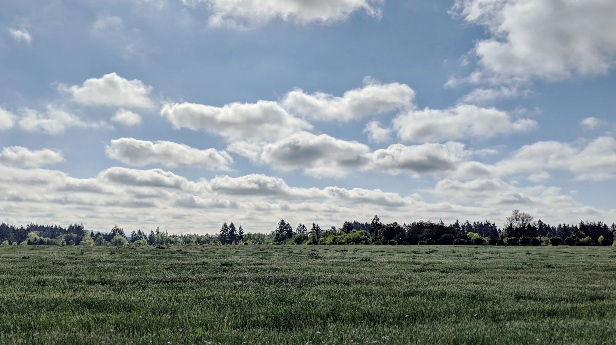 Photo spot across from the Hillsboro airport