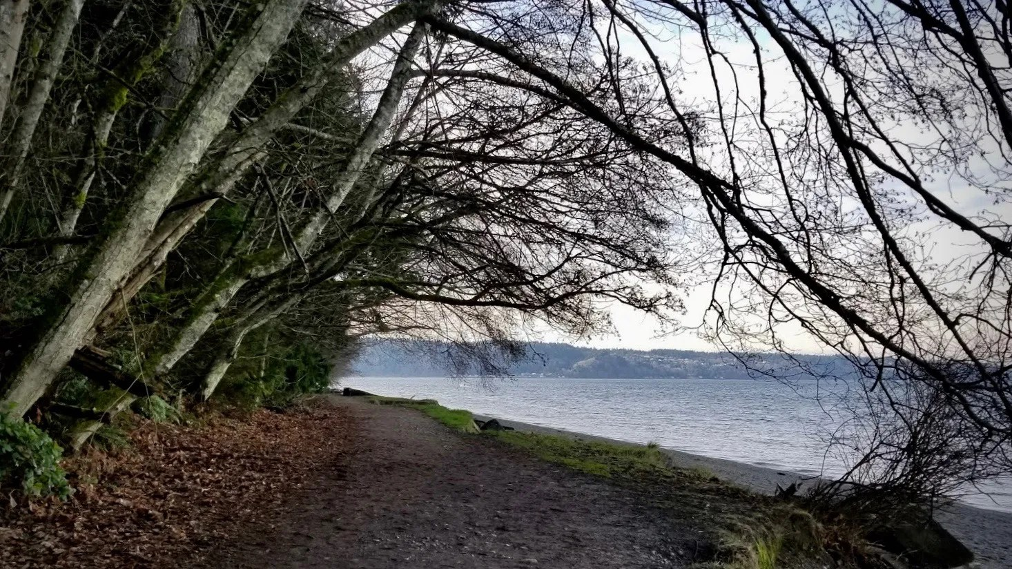 Owen Beach at Point Defiance Park, photo courtesy of Suzi
