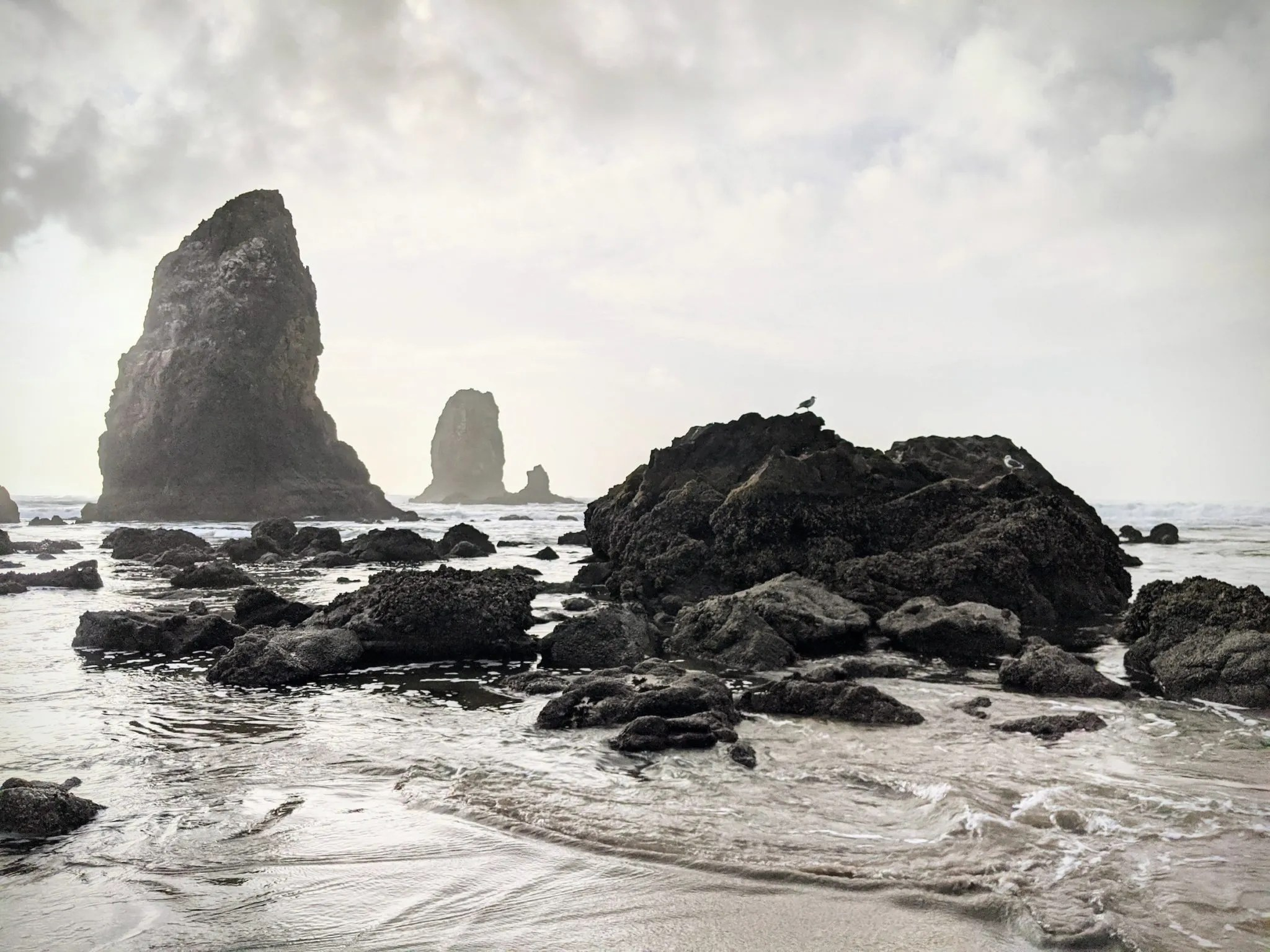 The Needles on Cannon Beach
