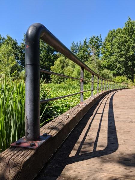 Bridge across a pond