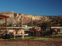 Our rides at Ghost Ranch