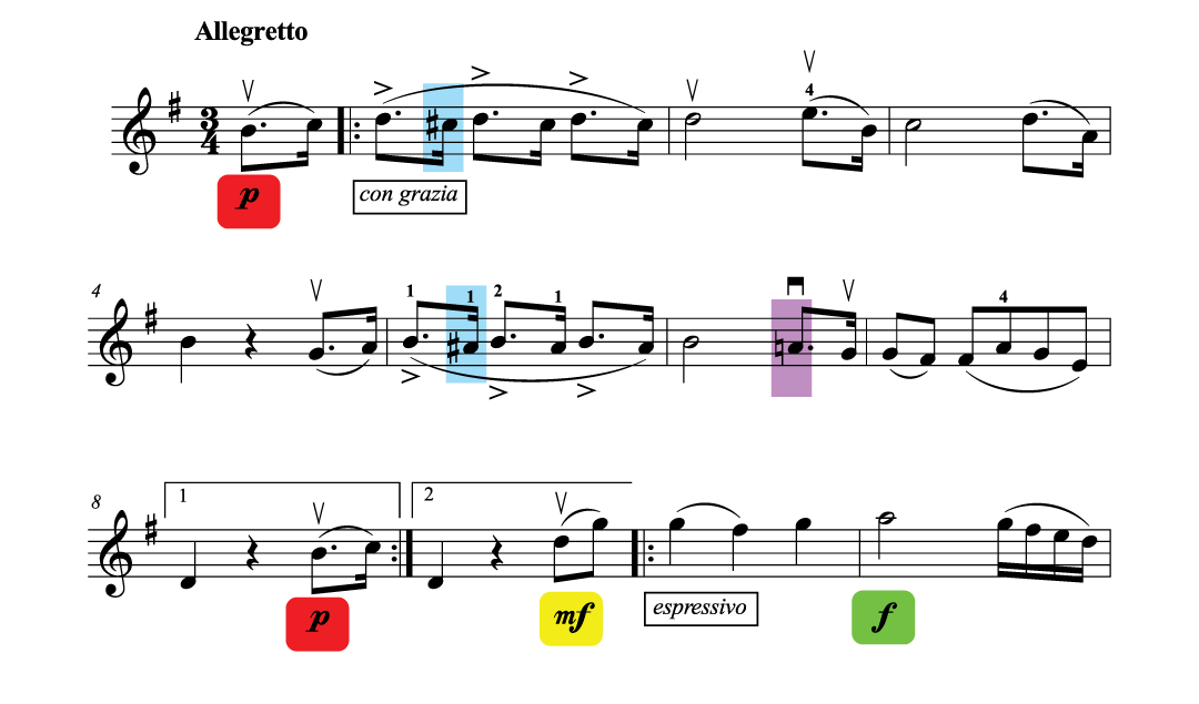 How to Approach a New Piece of Violin Music