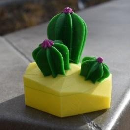 VR Desert Doodle – Cactus IV