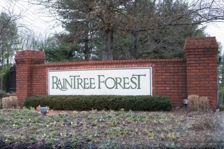 raintreesign