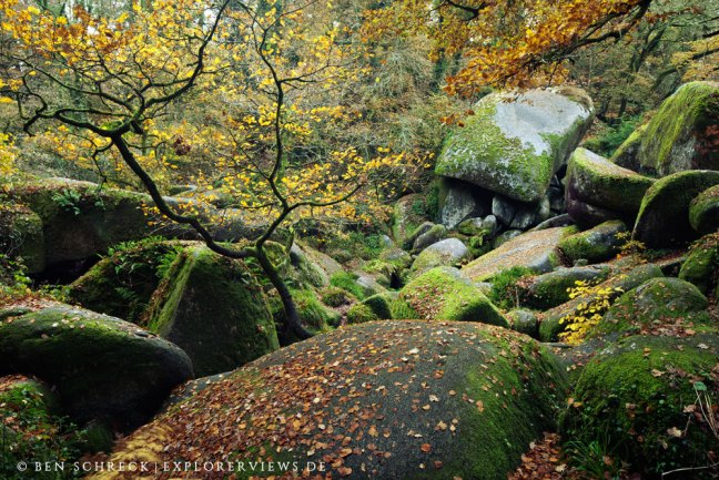 bretonischer Märchenwald Huelgoat