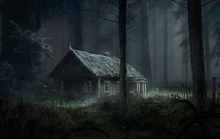 Poem The Cabin