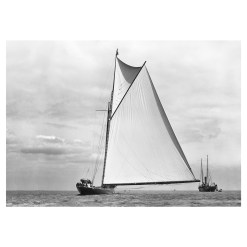 Unframed Black and White, Silver Gelatin, Limited edition Photograph of sailing yacht Shamrock 1. Taken by a famous marine photographer Frank Beken in 1899. This photograph was scanned from original glass plate negatives and developed in the dark room as they used to do it period. Available to purchase in deferent sizes from Brett Gallery. Beken of Cowes Framed Prints, Beken of Cowes archives, Beken of Cowes Prints, Beken Archive, Cowes Week old Photographs, Beken Prints, Frank beken of Cowes.