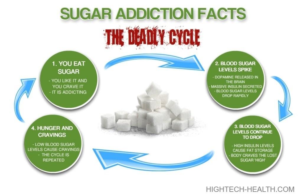 Review of Emulin Sugar Addiction Cycle